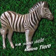 Zebra....ein Haustier?? Schaut mal nach!!