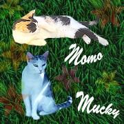 Momo und Mucky aus Dinomami`s Tierreich