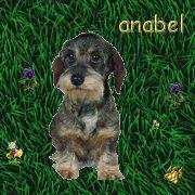 Anabel, die Netzsuchtel